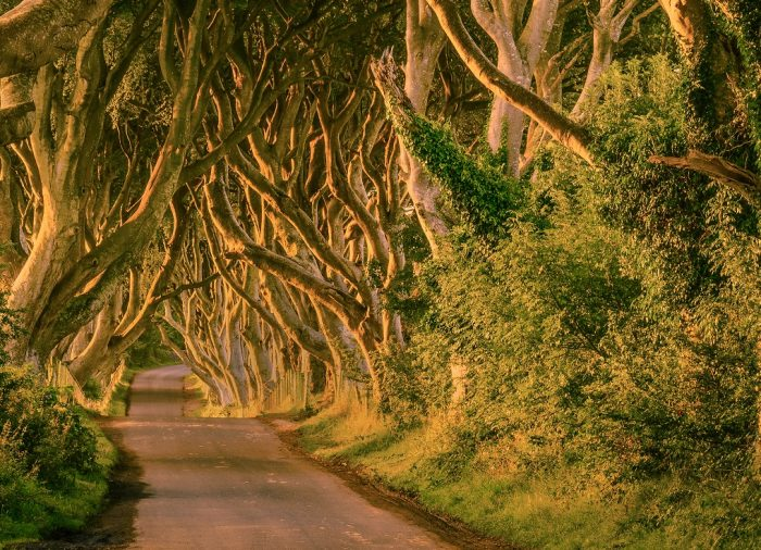 On the road: The Game of Thrones Routes